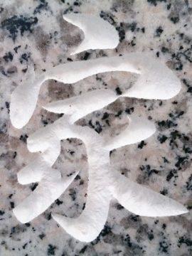 京都府でお墓クリーニングと文字塗装