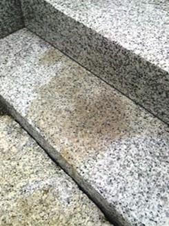 大阪府でお墓クリーニング [before]